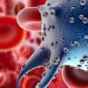 """Une """"superbactérie"""" sexuellement transmissible plus dangereuse que le SIDA"""