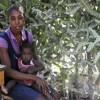 Racisme et insultes, les expulsés haïtiens racontent leur vie dominicaine