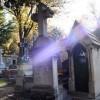 Y a-t-il une vie après la mort ? (1ere partie)