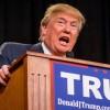 Donald Trump en route vers l'investiture républicaine